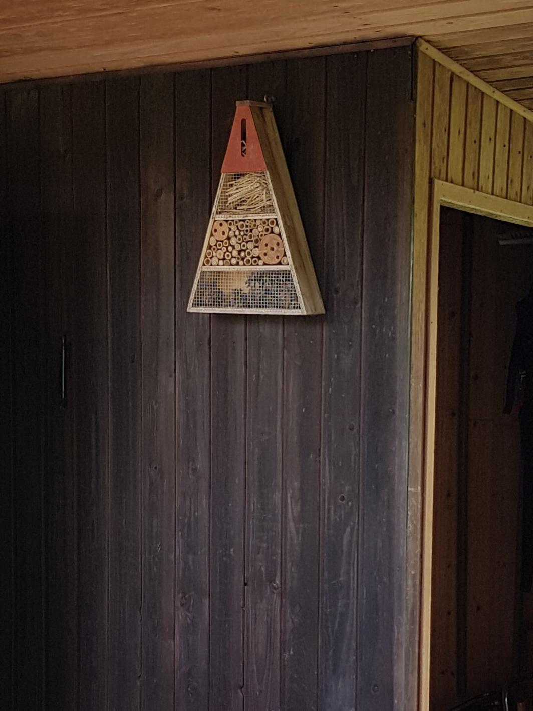 Mauerbienen als Untermieter; Stand 09.06.2018